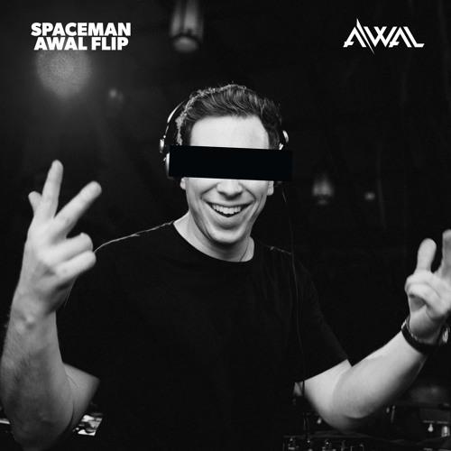 hardwell_spaceman_awal_flip